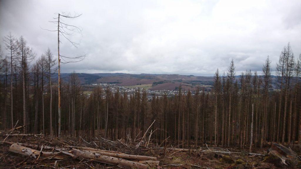 """Bei guter Sicht gibt es vom """"Teufelstreppchen"""" einen Blick übers Dilltal hinweg bis zur Burg Greifenstein und bis zum Feldberg im Taunus, schlägt Harald Hain für die Ruhe-Bank vor."""