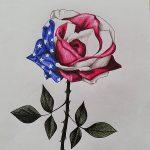 Amerikas Flagge in neuer Blüte. Gemalt von Viola Albrecht (10R3).