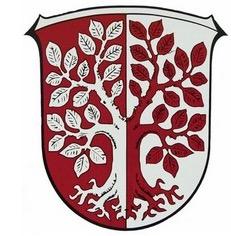 Wappen von Simmersbach mit der Philippsbuche und den hessischen Landesfarben